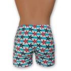 Kék csíkos stretch alsónadrág, tengeri csillag mintával